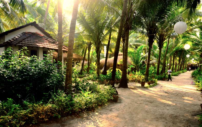 best dating places in goa Honeymoon in goa: find the list of romantic things to do in goa at times of india travel with us explore most romantic experiences of goa that give best romantic retreat for your life partner.